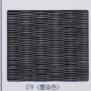 ダイケン清流09