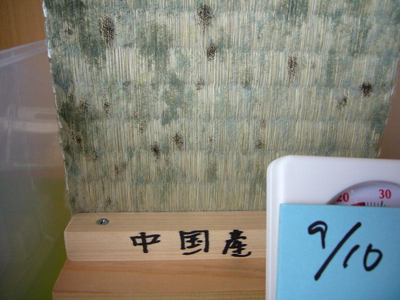 9/10中国産表